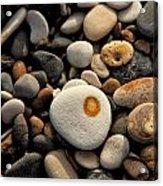 Egg Pebble Acrylic Print