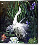 Egret And The Butterfly Acrylic Print