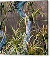 Egret Statue Acrylic Print