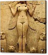 Egypt 1 Acrylic Print