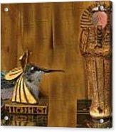 Egyptian Hummers Acrylic Print