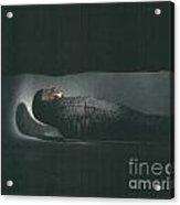 Egyptian Mummy Acrylic Print