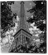 Eiffel Through Trees Bw Acrylic Print