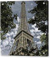 Eiffel Through Trees Acrylic Print