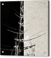 Eiffel Tower Abstract Bw Acrylic Print