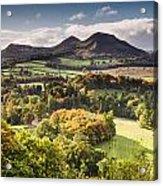 Eildon Hills   Acrylic Print