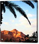 Ein Gedi Oasis Israel Acrylic Print