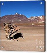 El Arbol De Piedra Bolivia Acrylic Print