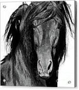 El Caballo Negro Acrylic Print