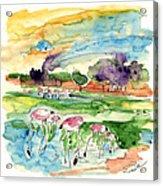 El Rocio 09 Acrylic Print