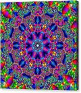 Elaborate Systems Acrylic Print
