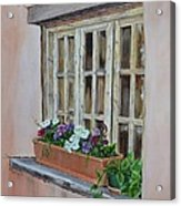 Elayne Look Through The Window Acrylic Print