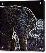Electric Elephant Acrylic Print