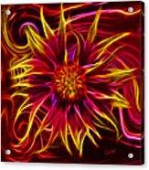 Electric Firewheel Flower Artwork Acrylic Print
