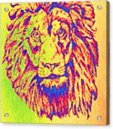 Electric Lion Acrylic Print