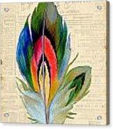 Elegant Feather-b Acrylic Print