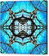 Elemental Force Acrylic Print