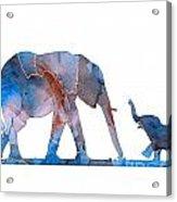 Elephant 01-3 Acrylic Print