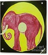 Elephant Cd Acrylic Print by Juan Molina