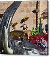 Elephant Celebration Acrylic Print by Kathy Clark