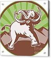 Elephant Giant Tusk Side Retro Circle Acrylic Print