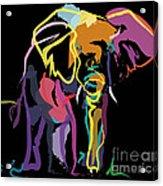 Elephant In Colour Acrylic Print