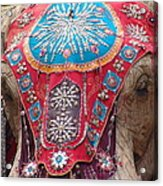 Elephant Mechanical Acrylic Print