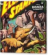 Elephant Stampede, Aka Bomba And The Acrylic Print
