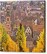 Elevated View Of The Riquewihr Acrylic Print