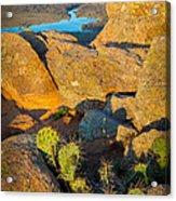Elk Mountain Sunset Acrylic Print