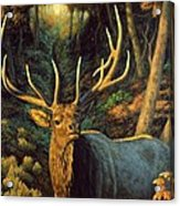 Elk Painting - Autumn Majesty Acrylic Print