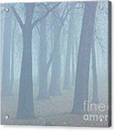 Elkhart Fog Acrylic Print