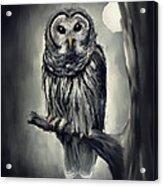 Elusive Owl Acrylic Print