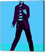 Elvis Is In The House 20130215p148 Acrylic Print by Wingsdomain Art and Photography