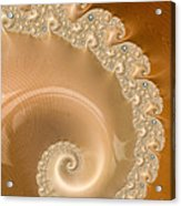 Embellished Blond Wood Acrylic Print