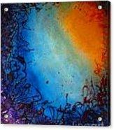Embryonic Journey Acrylic Print