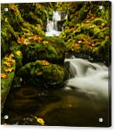 Emerald Falls In Columbia River Gorge Oregon Usa Acrylic Print