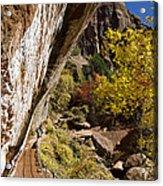 Emerald Falls Zion National Park Acrylic Print