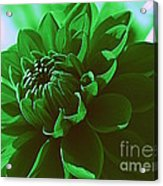 Emerald Green Beauty Acrylic Print