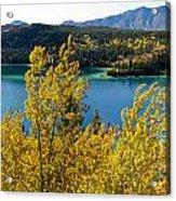 Emerald Lake At Carcross Yukon Territory Canada Acrylic Print