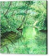 Emerald Stream Acrylic Print