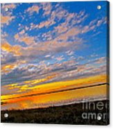 Emergence Acrylic Print by Q's House of Art ArtandFinePhotography