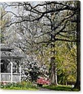 Emerging Of Spring Acrylic Print