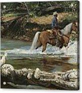 Palomino Crossing Big Creek Acrylic Print