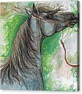 Emon Polish Arabian Horse 1 Acrylic Print