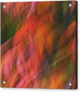 Emotion In Color Acrylic Print