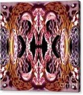 Empress Abstract Acrylic Print