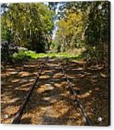 Empty Railroad Tracks Acrylic Print
