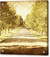 Empty Road Acrylic Print