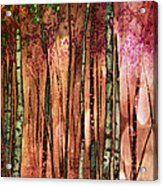 Enchanted Forest Acrylic Print by Stephen Norris